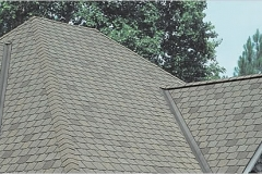 Designer Shingles in St. Louis
