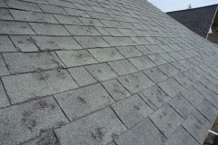 Hail Damage Repair Services in St. Louis