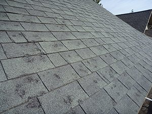 St. Louis Emergency Roof Repair Services